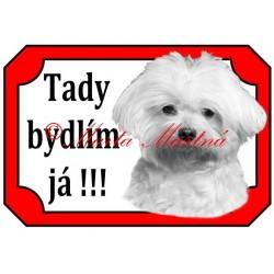 Tabulka maltézský psík stříhaný