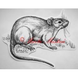 Samolepka potkan