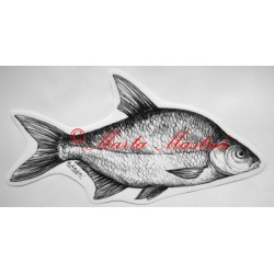 Cejn, ryba