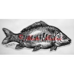 Samolepka kapr, ryba, ryby