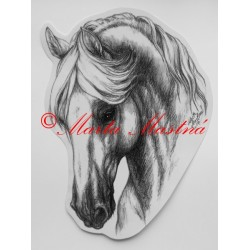 Samolepka kůň kladrubský, koně