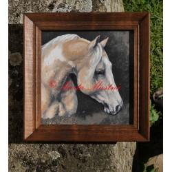 Obraz american paint horse, koně, olejomalba