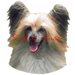 Samolepka čínský chocholatý pes - labutěnka