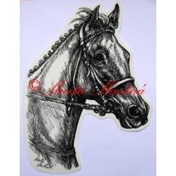 Samolepka anglický plnokrevník Tiumen, kůň, koně
