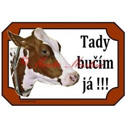 Tabulka kráva holštýn, skot