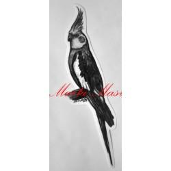 Samolepka korela, papoušek