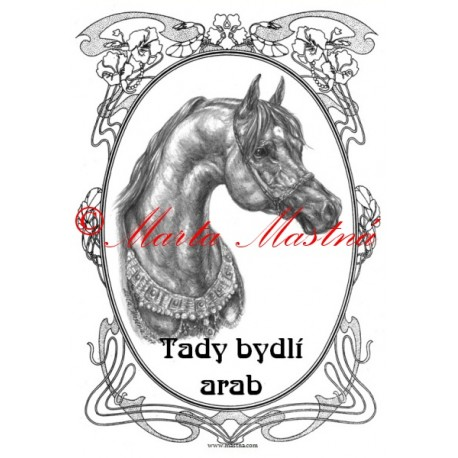 Tabulka arabský kůň, koně