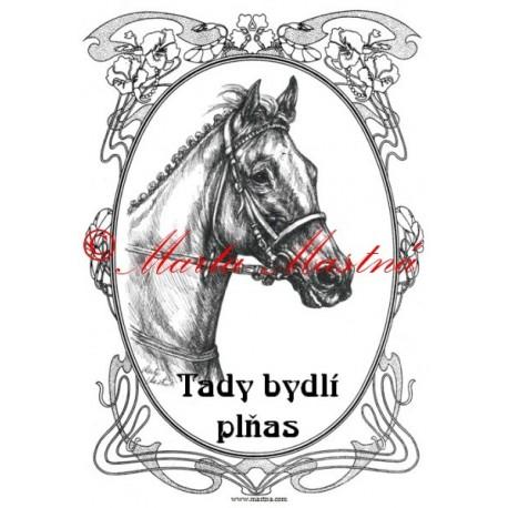 Tabulka anglický plnokrevník, kůň, koně