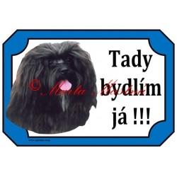 Tabulka ruská bolonka, boloňský psík barevný