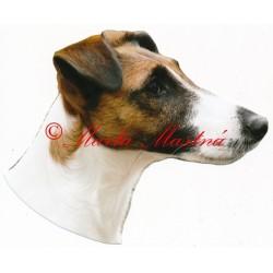 Samolepka havanský psík