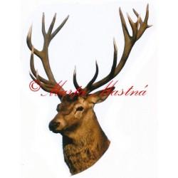 Samolepka jelen, myslivost - archiv