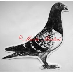 Samolepka holub poštovní