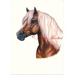 Obraz hafling, akvarel - tisk