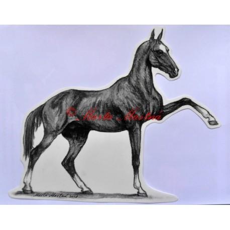 Samolepka achalteke, achaltekinec, kůň, koně