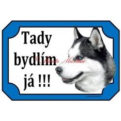 Tabulka husky sibiřský