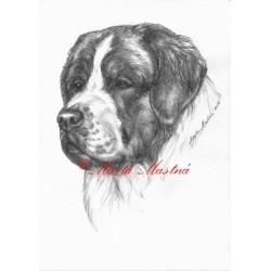 Obraz moskevský strážní pes, tužka - tisk