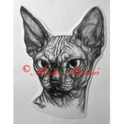 Samolepka kočka sfinx, sphinx