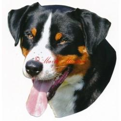 Samolepka appenzelský salašnický pes