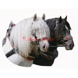Samolepka českomoravský belgik Agy a Barbar, koně chladnokrevníci