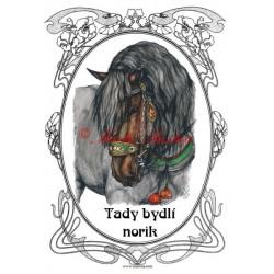 Tabulka norik, slezský norik, chladnokrevník, kůň, koně