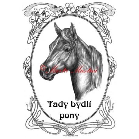 Tabulka minihorse, pony, kůň, koně