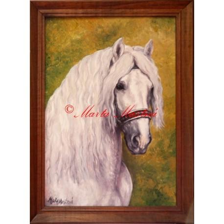 Obraz českomoravský belgik Agy, chladnokrevník, olejomalba koně