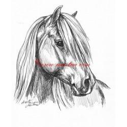 Samolepka pony, kůň, koně