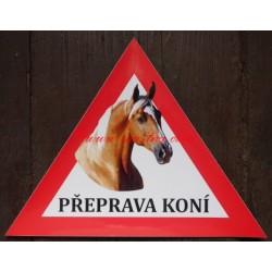 Trojúhelník kůň Kinský, isabela, palomino