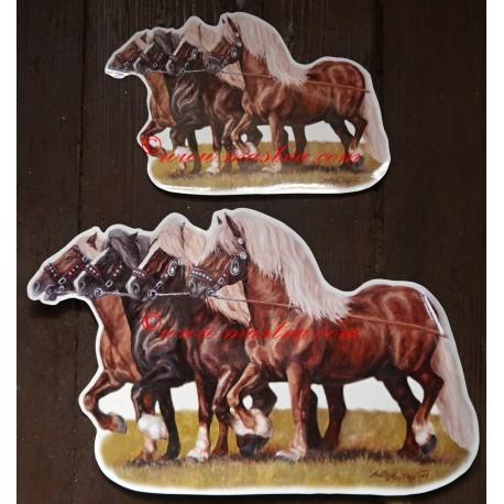 Samolepka chladnokrevníci, kůň, koně - menší