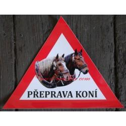 Trojúhelník koně chladnokrevní, norik
