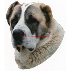 Samolepka středoasijský pastevecký pes, asiat