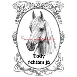 Tabulka paint horse, kůň, koně, western