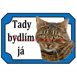 Tabulka kočka evropská