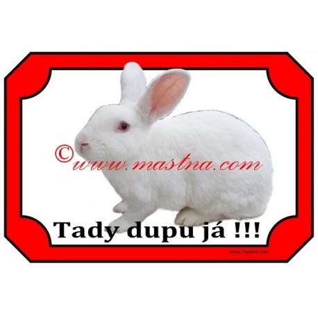 Tabulka králík český albín