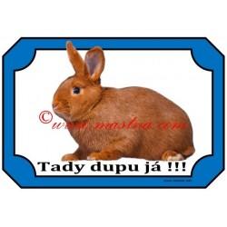 Tabulka králík český červený