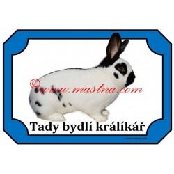 Tabulka králík český strakáč