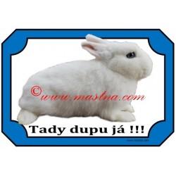 Tabulka králík hermelín bílý modrooký
