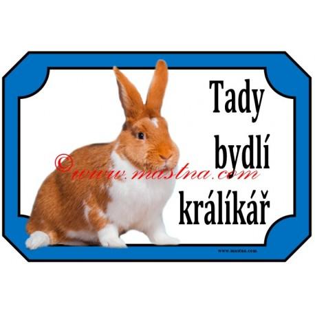 Tabulka králík meklenburský strakáč červený