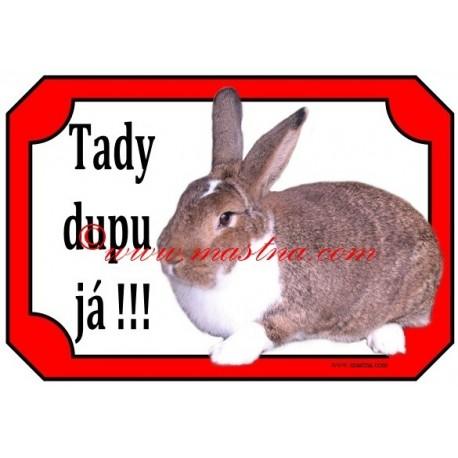 Tabulka králík meklenburský strakáč divoce zbarvený