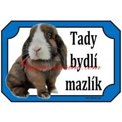 Tabulka králík zakrslý minilop