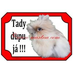 Tabulka králík teddy, dlouhosrstý