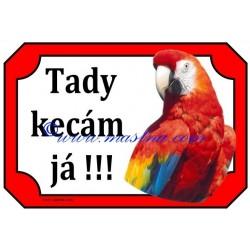 Tabulka papoušek ara zelenokřídlý