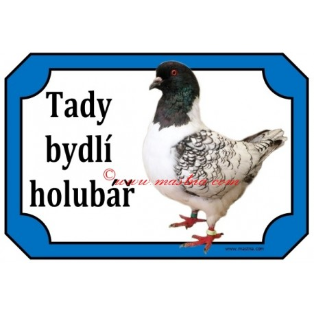 Tabulka holub moravský pštros
