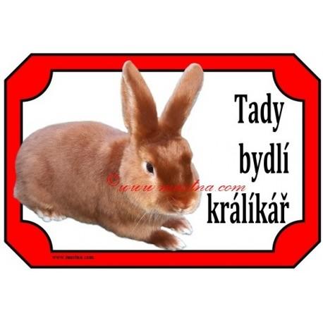 Tabulka králík saténový červený