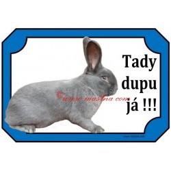 Tabulka králík moravský modrý