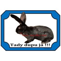 Tabulka králík belgický obr černý