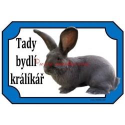 Tabulka králík belgický obr modrý