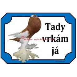Tabulka holub český voláč