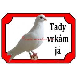 Tabulka holub rakovnický kotrlák