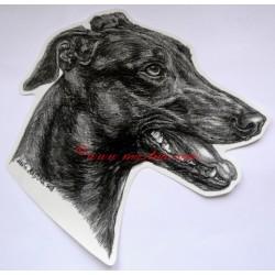 Samolepka greyhound, anglický chrt, vipet